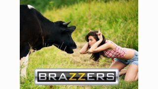 Brazzers TV Live